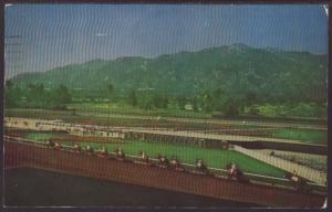 Horse Racing,Santa Anita Park,Arcadia,CA Postcard BIN
