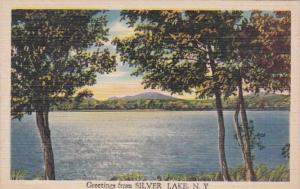 New York Greetings From Silver Lake