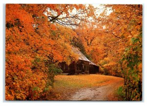 Postcard Autumn Colors Frame the Old Homestead New England NES35 K3