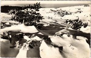CPA Le Mont-PILAT - L'hiver a la Jasserie alt 1400 m (581056)