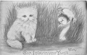 Cat Post Card Old Vintage Antique Can I Play in your Yard, V Colby 1910 Missi...