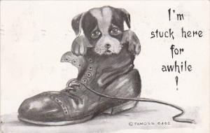 Humour Dog In Shoe I'm Stuck Here For Awhile 1910 Moss