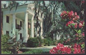 Boone Hall Plantation,Near Charleston,SC Postcard BIN