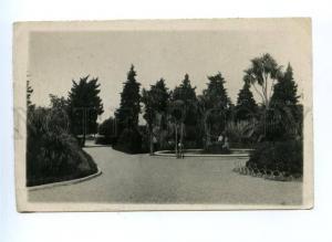 167617 Adjara Georgia BATUMI Boulevard Vintage photo postcard