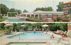 Vicksburg Mississippi~Magnolia Motor Hotel~Coffee Shop~Pool~Nice 1950s Cars