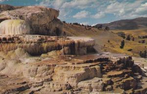 Minverva Terrace at Mammoth Hot Springs, Algae Bed, Calcium Carbonate, Yellow...