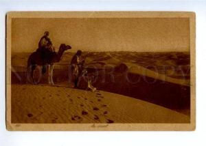 172055 Arabian desert Vintage Lehner & Landrock postcard