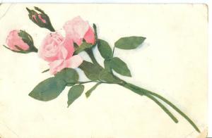 Flower, 1907 used Postcard