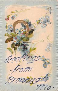 BRONAUGH MISSOURI GREETINGS FROM EMBOSSED~GILT HORSESHOE POSTCARD 1907