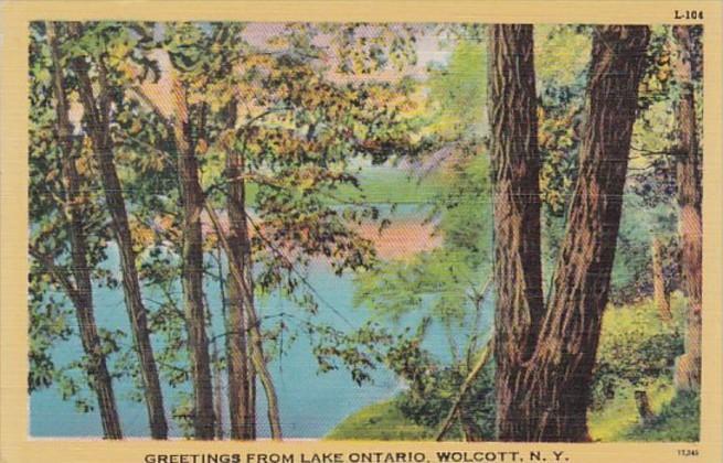 New York Greetings From Lake Ontario Wolcott