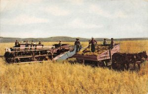 Having their pictures took Washington Oat Field Farming 1910s Vintage Postcard