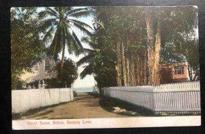 Mint Belize Color Picture Postcard PPC Rectory Lane Street Scene