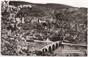 Fruhling in Heidelberg, Blick vom Philosophenweg, Germany, 1964 used Real Photo