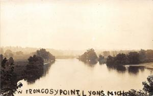 Lyons Michigan~Cosy Point View of Grand River~Ionia County~1915 RPPC-Postcard