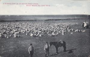 Summer Camp on an Oregon Sheep Range, Board Wagon and 3000 Head, 00--10s
