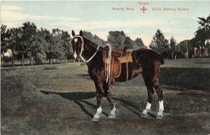 H61/ Twin Cities Wisconsin Postcard c1910 Schultz Brothers Delivery Horse 192