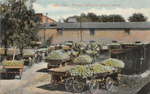 F36/ Clyde Ohio Postcard 1910 Cabbage Farmers Occupational Wagons