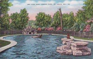 Sea Lion Pool Forest Park Saint Louis Missouri