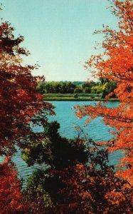 Autumn Scene in the Ozarks, AR & MO, 1951 Chrome Vintage Postcard g9340