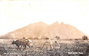 Mexico Old Vintage Antique Post Card Farming Scene Monterrey 1955 Real Photo
