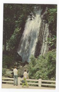 Puerto Rico El Yunque Rain Forest Water Fall Vintage 1969 Postcard