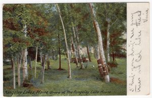 Rangely Lakes, Maine, Grove at The Rangely Lake House