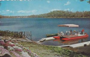 Flowers and Pontoon Boat on Shore, A Beautiful Lake for Fun and Sports, Canad...