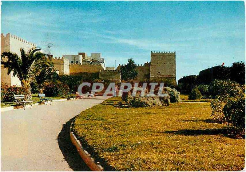 Postcard Modern Sfax Gardens at the foot of the Ramparts