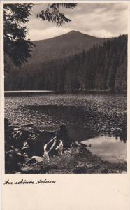 RP, Mountains, Am Schonen Arbersee, ARBERSEE (Bavaria), Germany, 1920-1940s