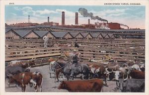 Illinois Chicago Union Stock Yards