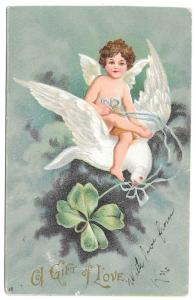 Valentine Postcard Cupid Angel Riding on Dove Shamrock