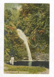 Blue Basin, Waterfall, Trinidad, 00-10s