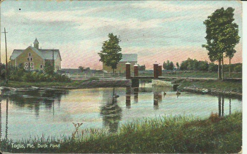Togus, Maine, Duck Pond