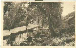 Les frais ombrages du Ciron, early 1900s unused Postcard CPA