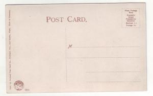 P360 JL, 1909 postcard alaska-yukon expo seattle wash cascades gov,t buildings