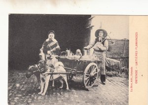 P1823 old belgium dogs & milk wagon ostende - laitieres flamandes