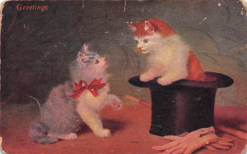 Cat Post Card Magic Cats Unused
