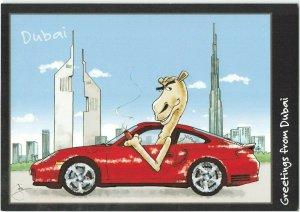 UAE Middle East Postcard, Greetings from Dubai, Cartoon Camel IC8