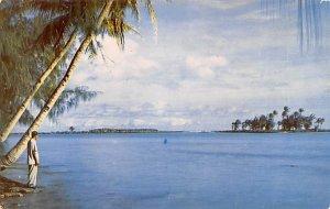 Viewing Fofos Island Guam Unused