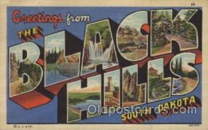 Black Hills, South Dakota, USA Large Letter Towns Postcard Postcards  Black H...