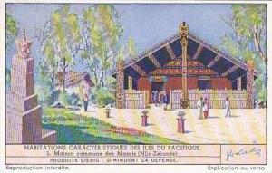 Liebig Vintage Trade Card S1390 Typical Dwellings of the Pacific Islands No 2...
