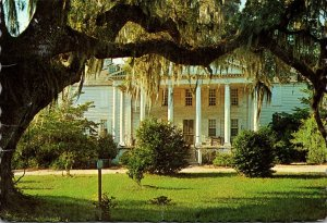 South Carolina Charleston/Georgetown Hampton Plantation 1993