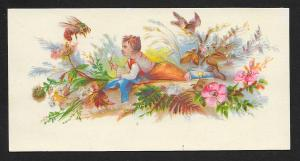 VICTORIAN TRADE CARDS (2) Stock Cards Boy in Flowers with Birds & Insect