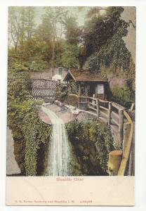 UK England Isle of Wight Shanklin Chine WAterfall T E Porter Postcard c1910