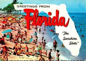 Florida Greetings From The Sunshine State With Beach Scene