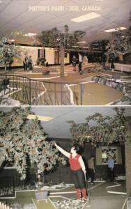 SAULT STE. MARIE , Ontario, Canada, 1966 ; Miniature Golf Course