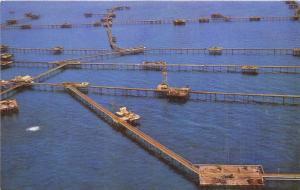 B29282k Baku view of the Neftyanye Kamni oil works  azerbaijan