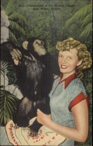 Miami FL Monkey Jungle Woman w/ Chimpanzee Linen Postcard