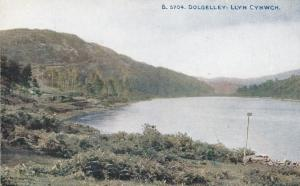 Llyn Cynwch Dolgelley Stick By River Antique Welsh Postcard