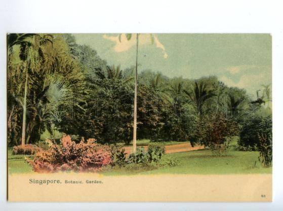 147155 SINGAPORE Botanic Garden Vintage undivided back pc